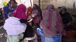 Lundi 04 mars 2019: lecture du Saint Coran à la Daara Hizbut-Tarqiyyah de TOUBA