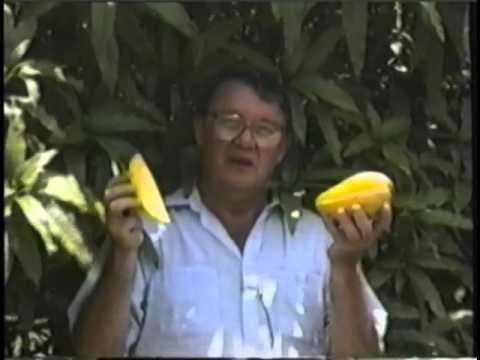ECHO Tropical Fruits Video Series - Mangoes, Papaya & Coconut (Part 5 of 6)