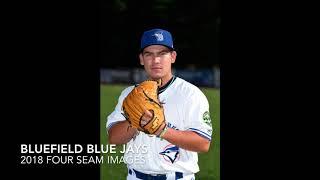 2018 Bluefield Blue Jays