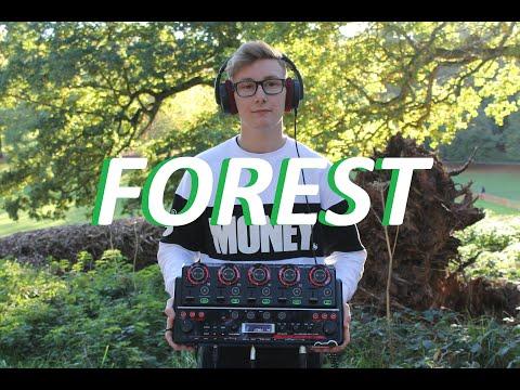 BALANCE - FOREST