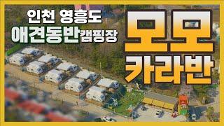 인천 영흥도 모모카라반 캠핑장 ㅣ 애견동반 캠핑장 ㅣ …