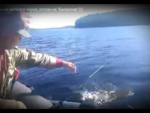 рыбалка на балансир летом с лодки видео
