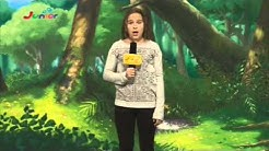 Junior TV Germany - Ident's
