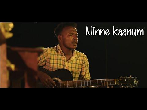 Ninne Kaanum | Kadumkaappi | Nikhil Chandran