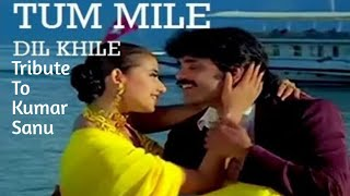 Tum Mile Dil Khile Full Song Extended Virsion In The Description Kumar Sanu Songs Love Muzik