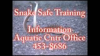 Safe Snake Training .mp4