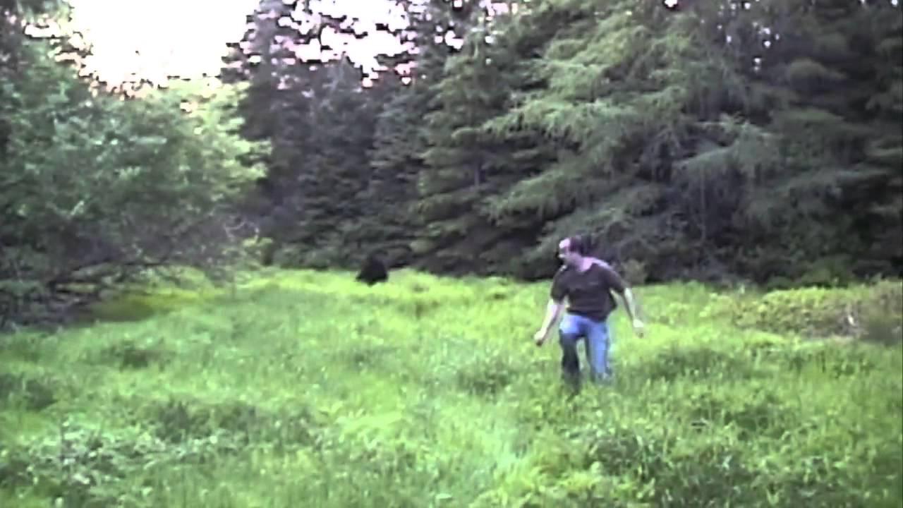 Image result for Prince Edward Island, Canada (2005) Sasquatch sightings