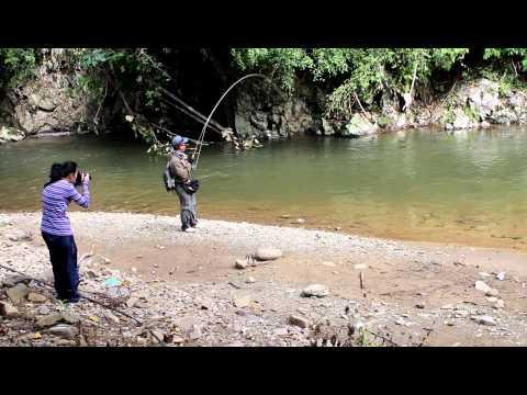Memancing Ikan Kelah Di Sungai Apin-Apin