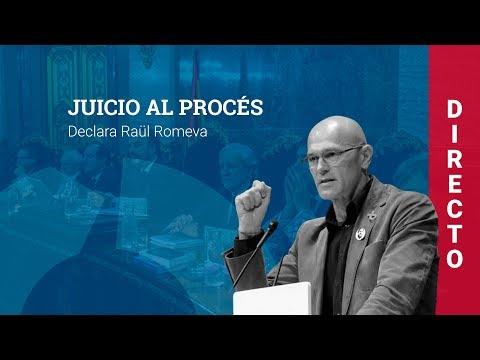 Jordi Turull y Raül Romeva declaran en el juicio al procés independentista (19/02/2019, tarde)