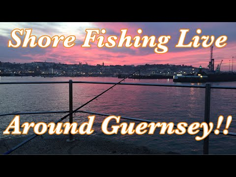 Fishing Live At Harbour In Guernsey