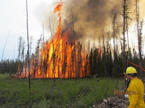 NASA Works with Forest Service to Improve Fire Shelters