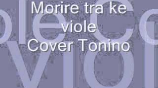 Morire tra le viole     Cover Tonino.wmv