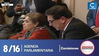 Sesión Comisión de Constitución 8 (19/07/19)