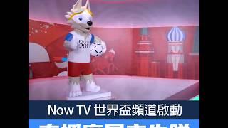 Now TV 世界盃頻道啟動 直播廠景率先睇