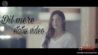 Dil mere status video song
