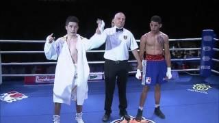 WSB Season VI Week 8  Uzbek Tigers vs Puerto Rico Hurricane - Highlights
