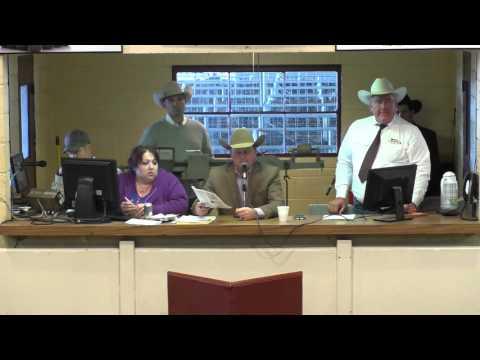 2016 KAA Livestock Auctioneer Championship