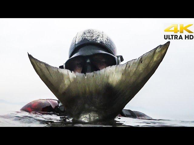 ΡΕΚΟΡ ΓΟΦΑΡΙΟΥ - ΚΑΘΕ ΟΥΡΑ ΕΧΕΙ ΜΙΑ ΙΣΤΟΡΙΑ 🏆5,9kg POLESPEAR |Spearfishing Life 🇬🇷 [4K]✅