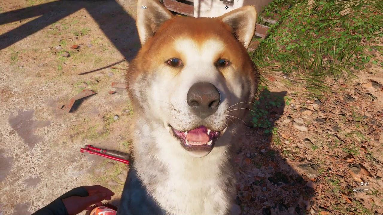 Far Cry New Dawn Timber Canine Companion Retriever Kills A Highwayman Ps4 Pro Gameplay 2019 Youtube
