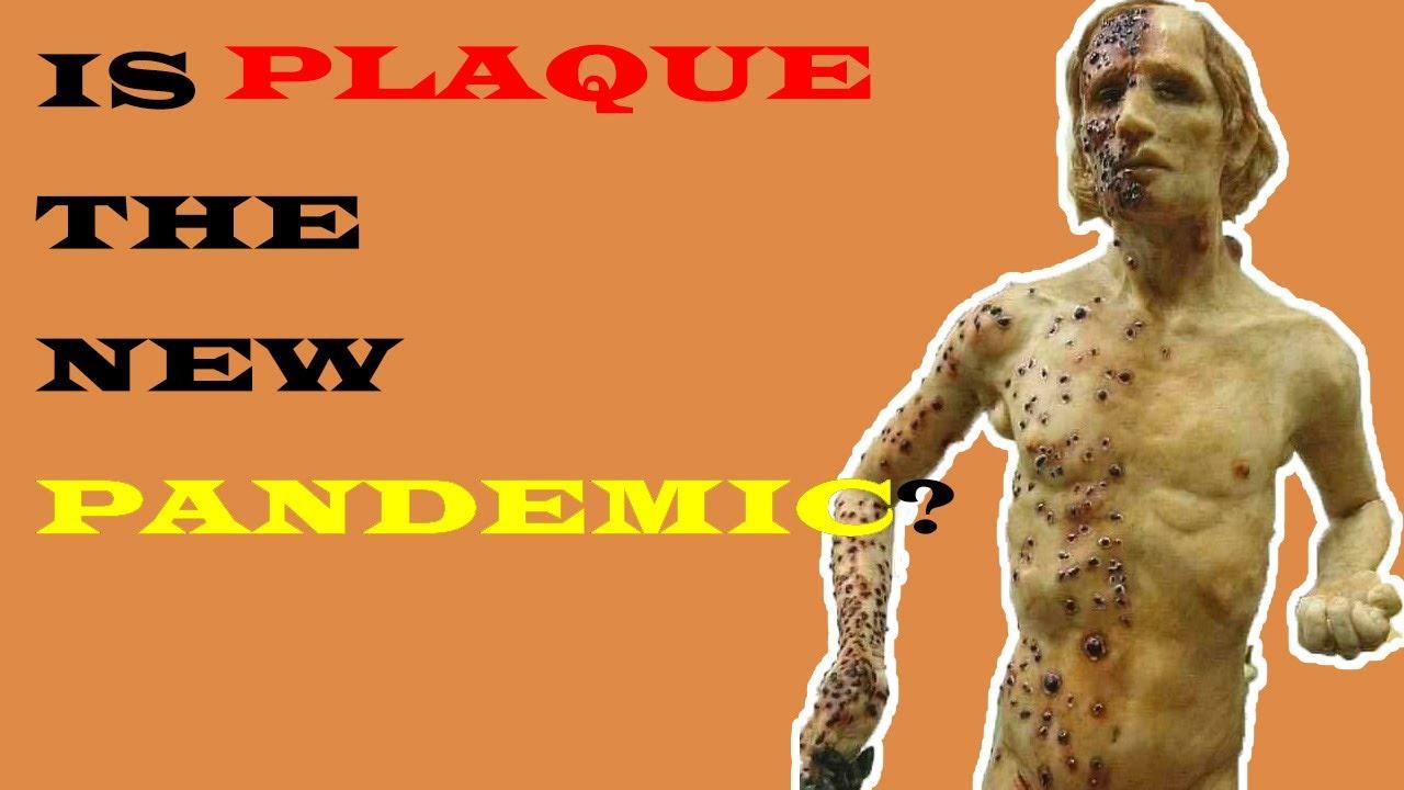 BUBONIC PLAGUE SEEN IN CHINA II IS BUBONIC PLAGUE NEW ...