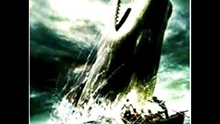 Flagrante de orca atacando caiaque na África do Sul