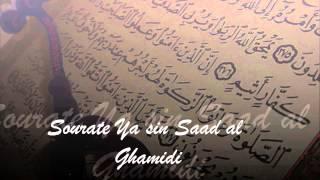Sourate Ya Sin - Saad Al Ghamidi