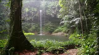 Как звучит Индейская флейта музыка и дождь