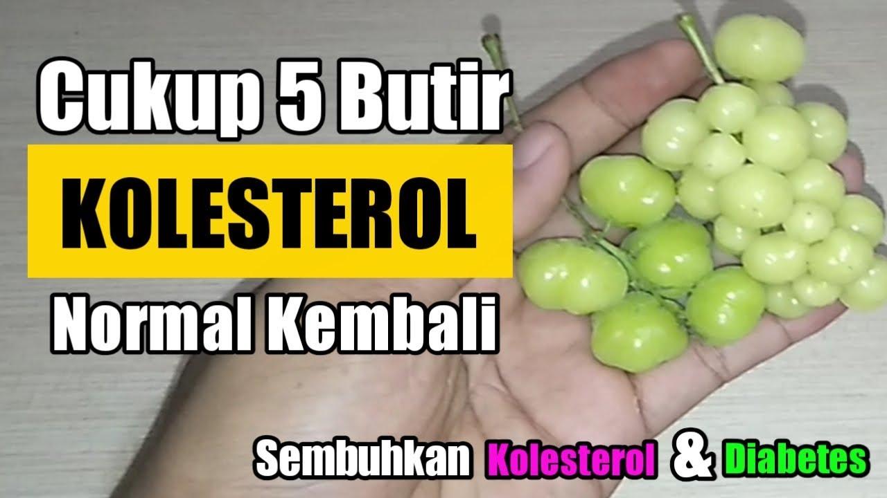 CUKUP 5 BUTIR !!Cara Menurunkan Kolesterol & Mengobati ...