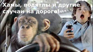 Подборка. Хамы, водятлы и другие интересные случаи на дороге.
