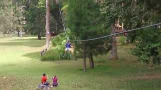 Treetop Challenges