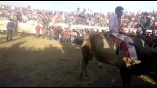 FERIA TLAUNILOLPAN HGO 2016 _TORO PASA MONTAÑAS VS EL RANCH