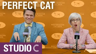 The Westminster Cat Show - Studio C