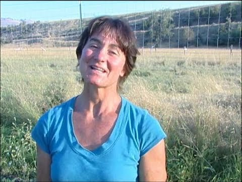 profit: organic farming vs. permaculture farming
