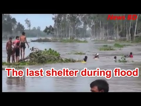 recent water flood in bangladesh washed away their lives and hopes