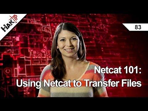 Netcat 101: Using Netcat to Transfer Files, Haktip 83