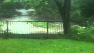 Our creek a-flooding