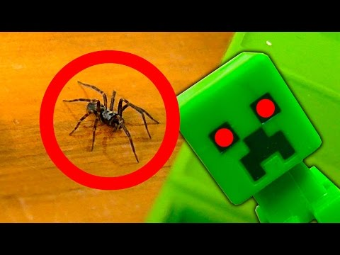 Nasty Spider In The Minecraft Toys Nerf Gun Spider Strike