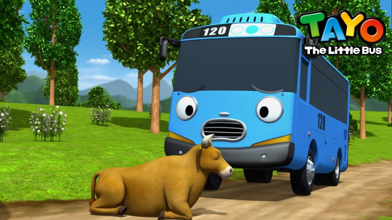 Tayo Bahasa Indonesia Spesial l #94 Seekor sapi aneh di jalan l Animasi Anak-anak l Tayo Bus Kecil