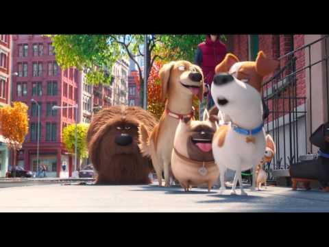 PETS - VITA DA ANIMALI - Terzo trailer italiano ufficiale