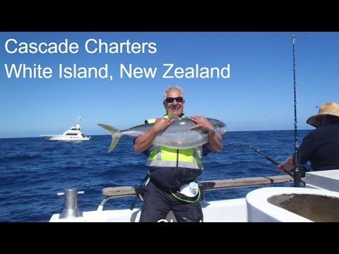White Island Kingfish! Cascade Fishing Charters