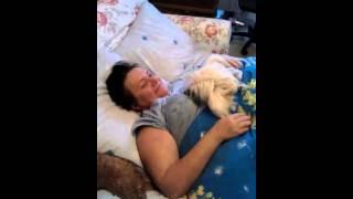 Как правильно поднять уши собаке путем надувания !!!.3gp(, 2011-11-10T21:11:58.000Z)