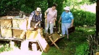 Curek Ivan podravski pčelar