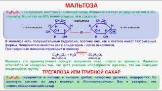 № 142. Органическая химия. Тема 21. Углеводы. Часть 16. Мальтоза