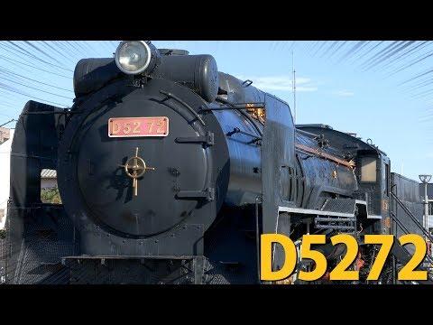 名列車訪問御殿場駅でデゴニに出会った〜 / D52 72号機