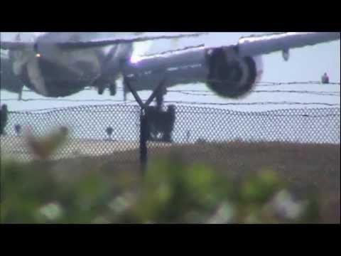 Turkish Airlines Boeing 777-35R/ER [TC-JJL] Landing LAX