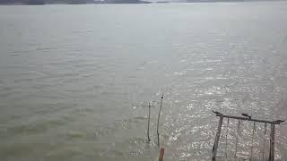 [하늘별바다펜션] 목포에서 젤 가까운 바닷가 펜션