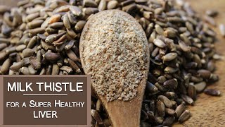 Milk Thistle Benefits for a Super Healthy Liver