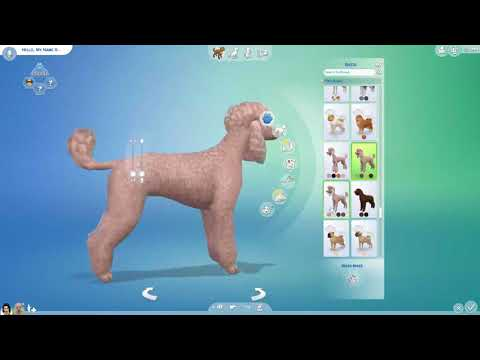 ALL THE DOGS AND CATS IN SIMS 4 CATS AND DOGS