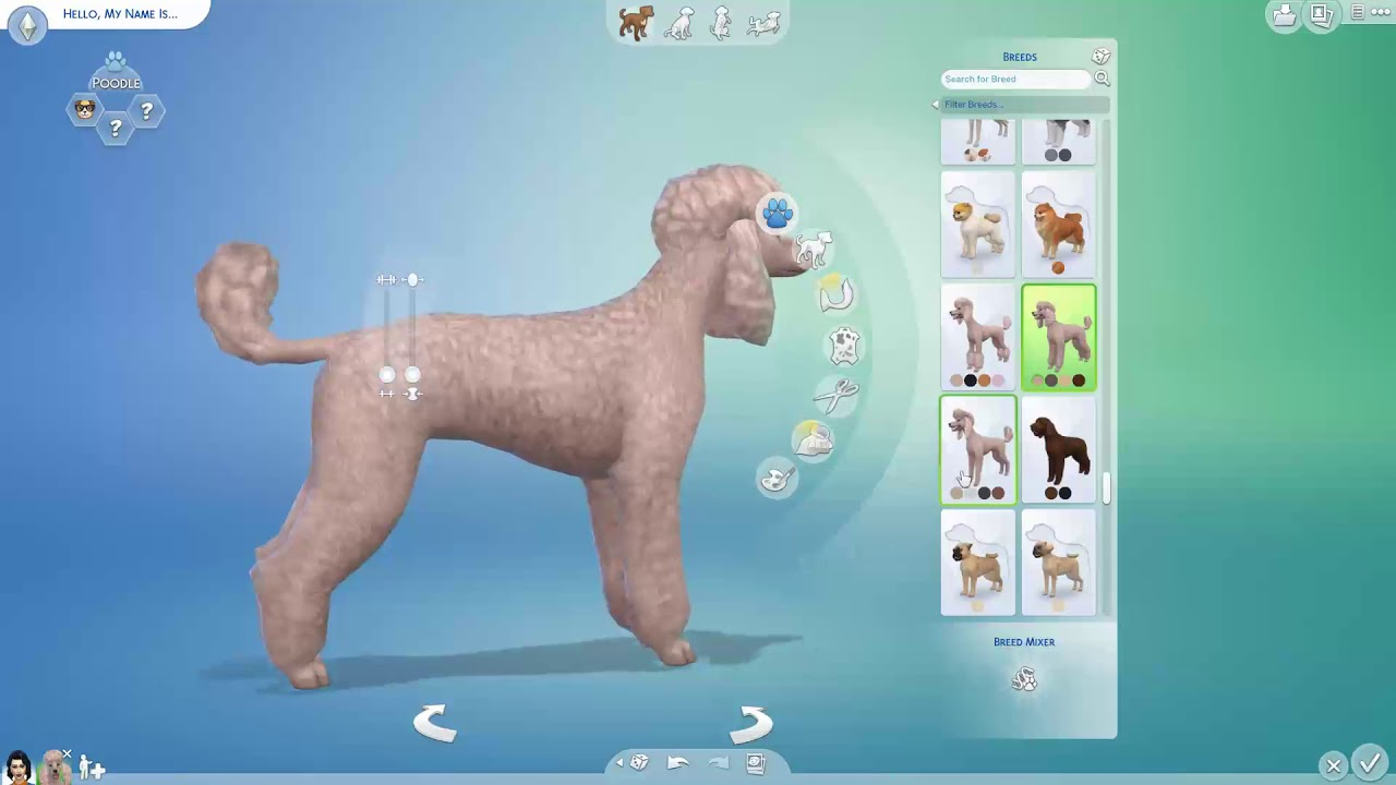 ALL THE DOGS AND CATS IN SIMS 4 CATS AND DOGS - YouTube