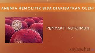 Anemia Hemolitik Intracorpuskular dan Ekstrakorpuskular, mebranopathy, Enzimopathy, Hemoglobinopathy.